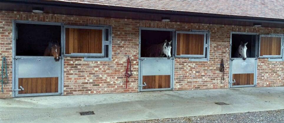 Custom stable design plan a horse stable design for Online barn designer