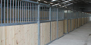 softwood stable boarding 2